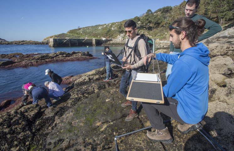 Jornada de muestreo y huella espectral de macroalgas del proyecto Alganat en las Islas CÍes.