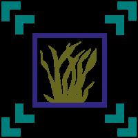 alganat-favicon